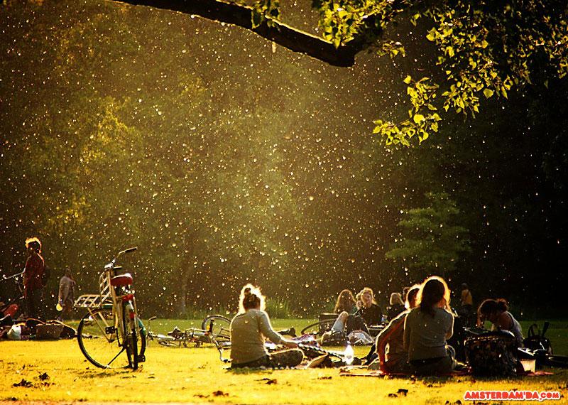 Vondelpark Piknik Alanı