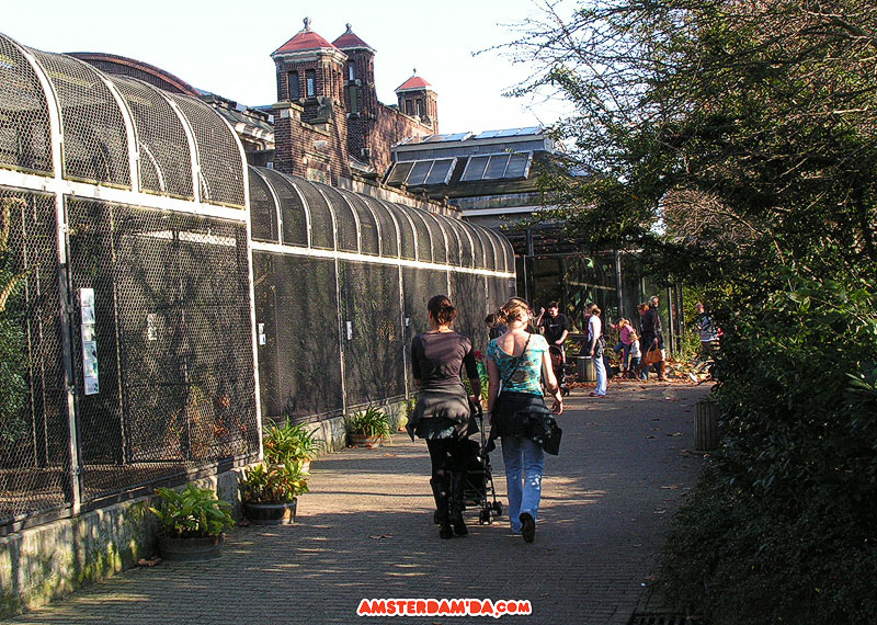 Amsterdam Artis Hayvanatbahçesi