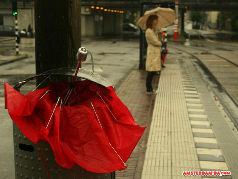 Amsterdam'da yaz fırtınaları hızla gelir ve sizi yakalar. Sıcak bir günde bir anda sert yağmur ve her yönden esen rüzgarla neye uğradığınızı şaşırırsınız. Sert rüzgara şemsiyeler pek dayanamaz. 15 dakikalık yağmurun ve fırtınanın ardından çöp tenekelerini atlılmış kırık rengarenk şemsiyeler donatır. Fotoğraf sahibi Nadia de Jong